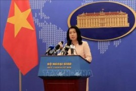 China's vessels halt survey in Vietnam's exclusive economic zone